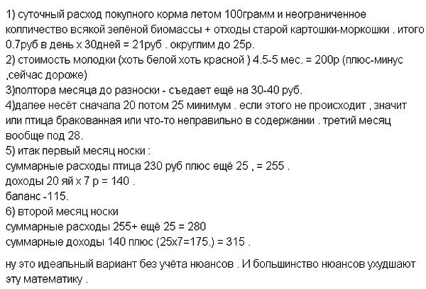 Математика бизнеса на несушках