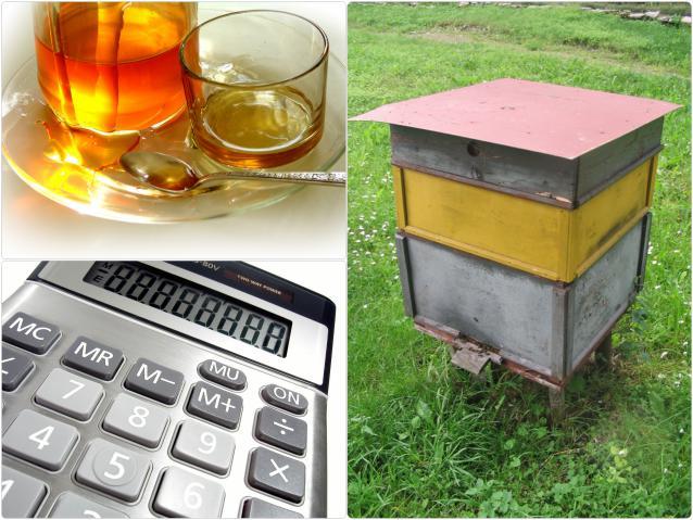 Пчеловодство как бизнес начинается с 50 ульев